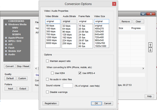 Conversion options WM Video converter