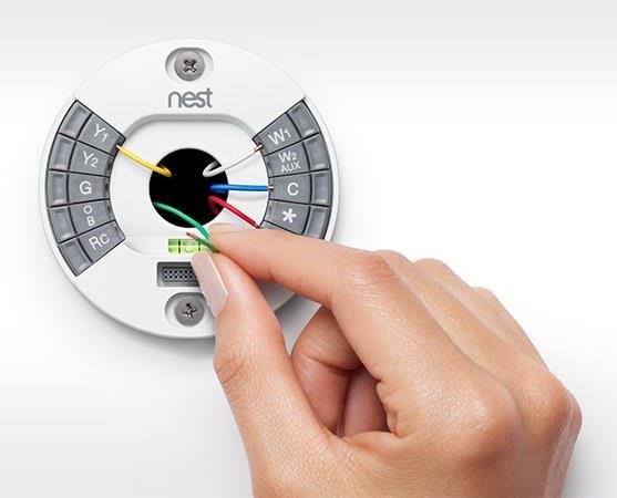 Nest_7.jpg