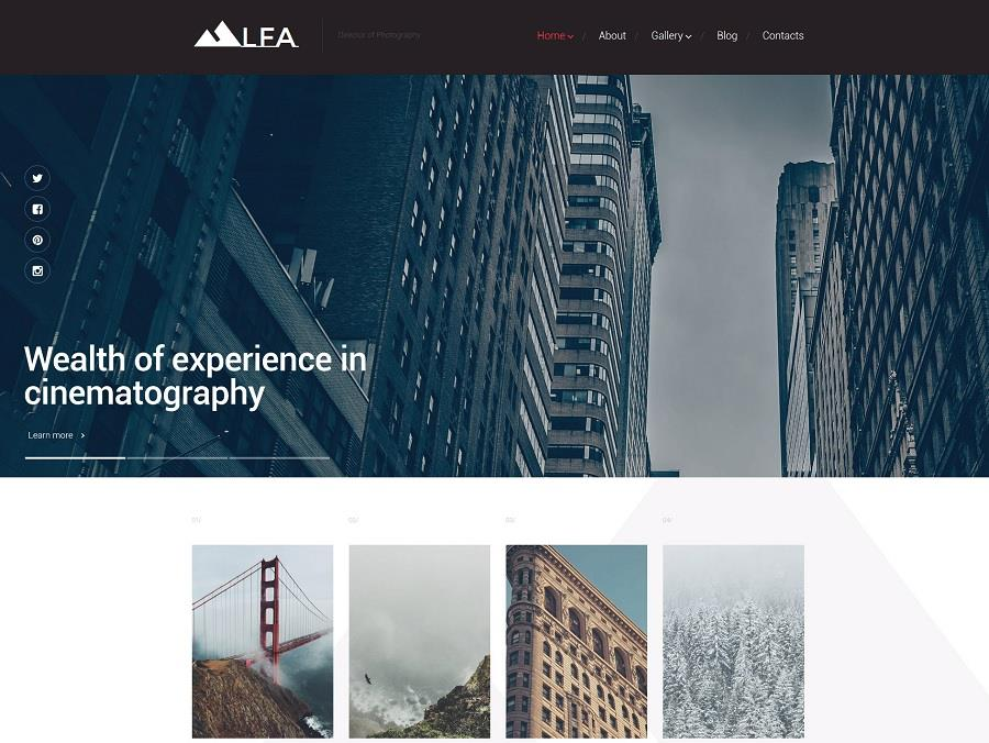 Must-have Trends for Contemporary WordPress Sites