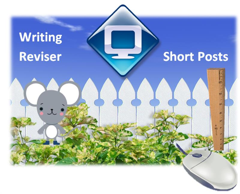 Writing Reviser_3