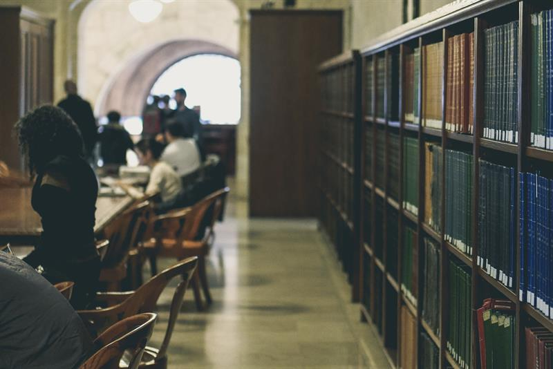 People studying in library