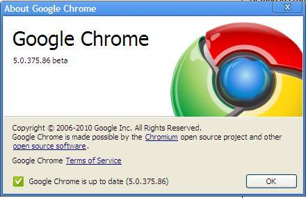 Google Chrome 5.0.375.86 Updated to the latest Version