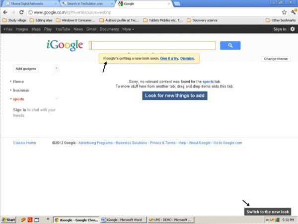 iGoogle image 2